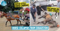 Horse Collapses On West Java Street Due To Exhaustion, Calling Attention To Indonesia's Horse Carriage Tradition