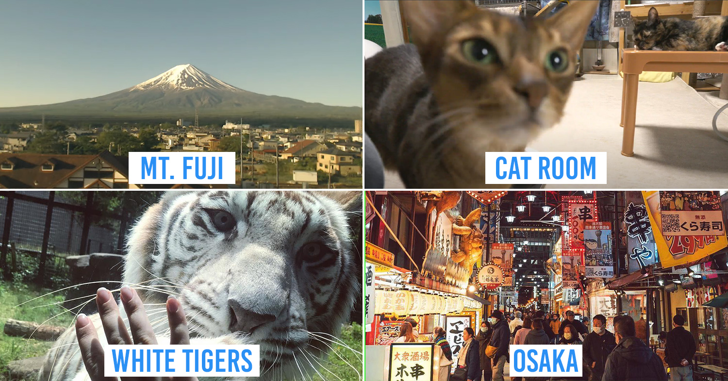 11 Free Livestreams In Japan That Let You Travel Without Leaving Your House