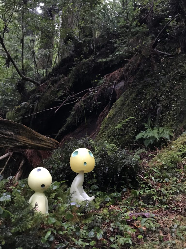 Real Life Anime Locations - Kodama sitting on forest bed