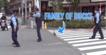 Japanese Policemen Escort Family Of Ducks Across Road, Shows Politeness Knows No Bounds in Japan
