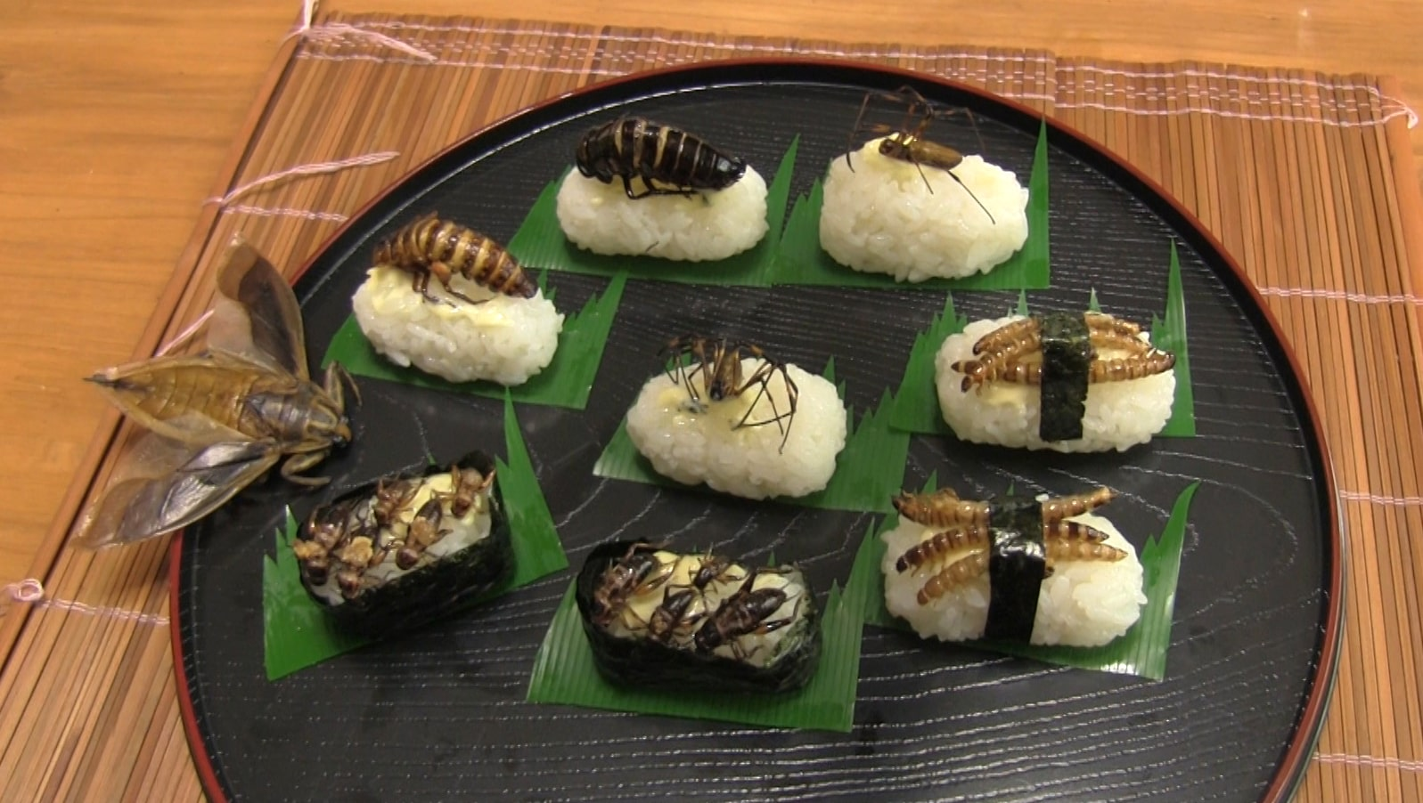 Weirdest Japanese Food 17 - insect sushi