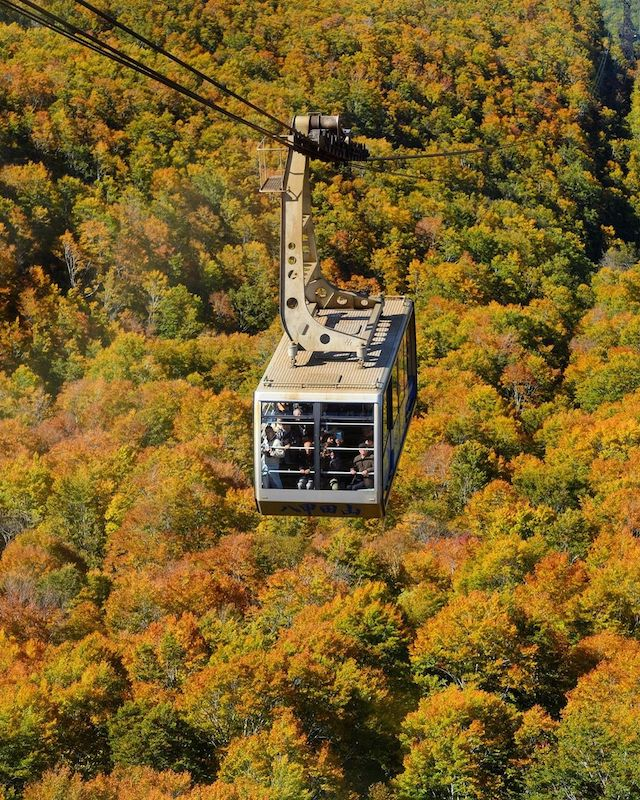 Mountains in Japan - Hakkōda Ropeway cable car during the peak of autumn