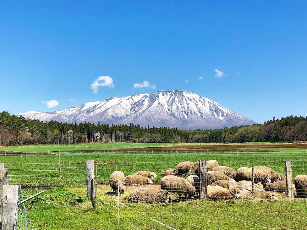 Mountains in Japan - view of Mount Iwate from Koiwai Farm in Iwate Prefecture