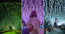 Light Flower Garden Illumination In Japan Is A Sight To Behold With More Than 5 Million Lights