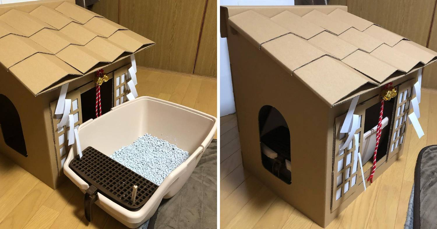 cardboard cat shrine - cover litter box
