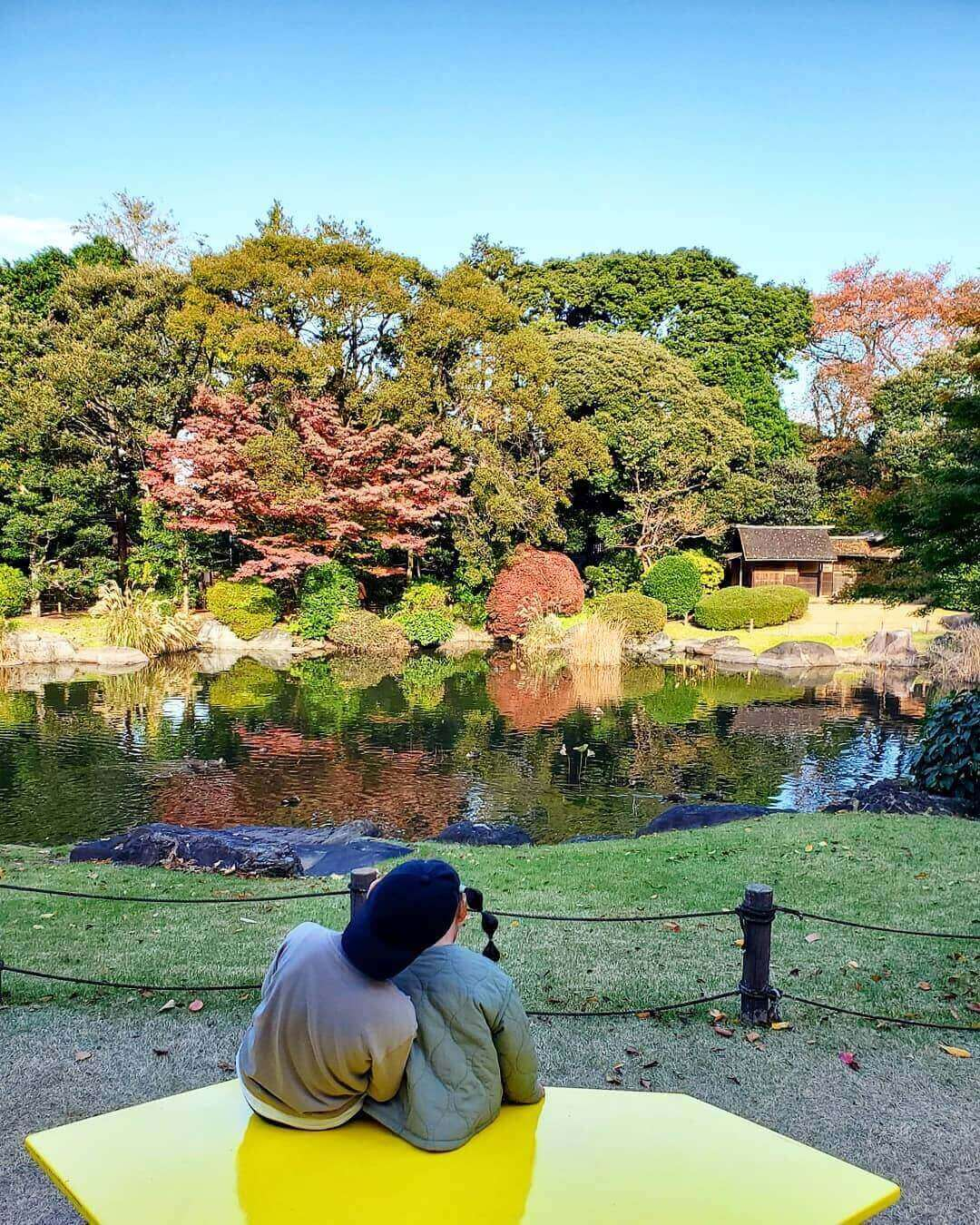 japanese autumn leaves - tokyo national museum
