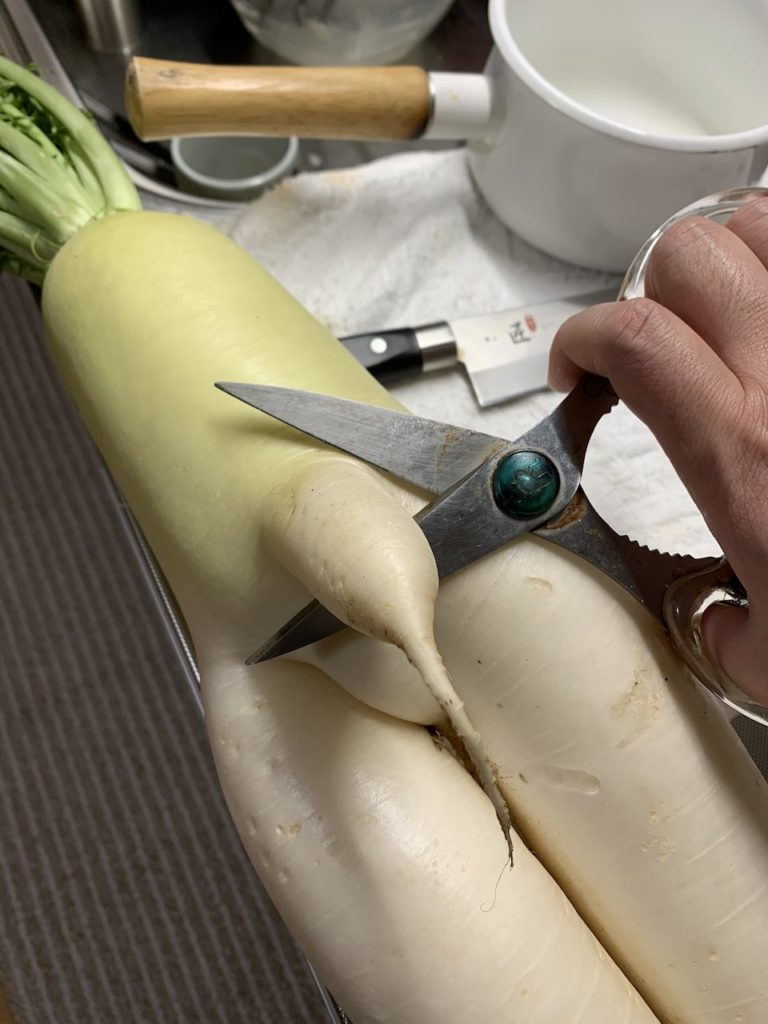 Japanese finds r-rated daikon - cutting daikon with scissors
