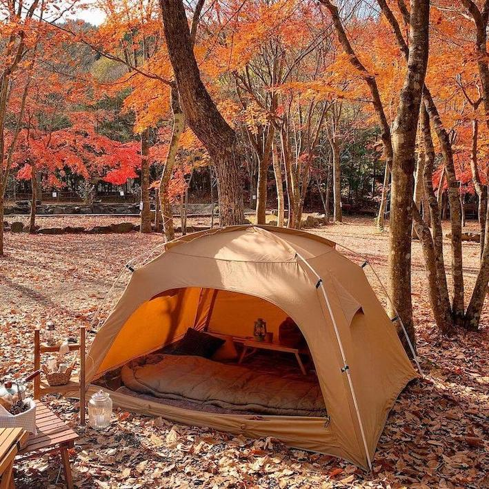Trendy Japanese words - solo camping