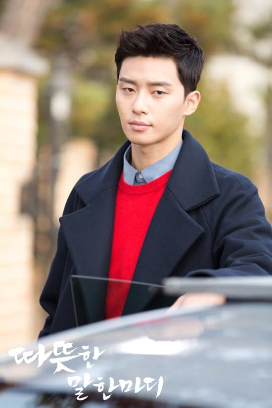 Park Seo-joon Record of Youth - One Warm Word