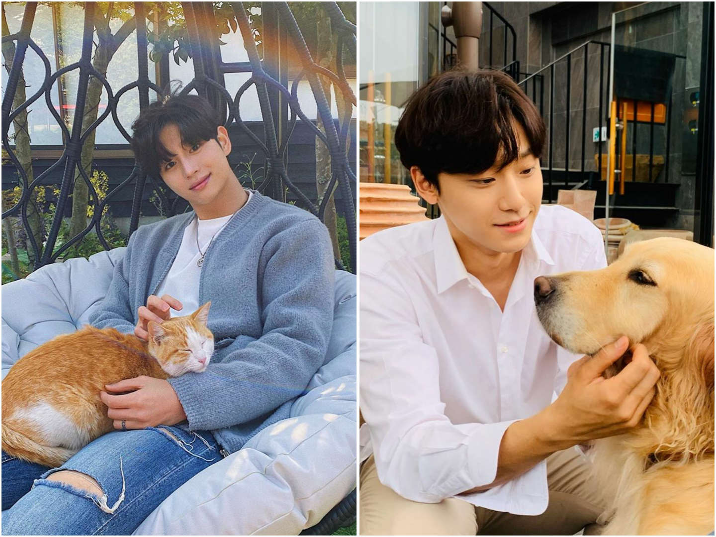 Photo Poses For Men - Pose with furry friends, Lee Do-hyun