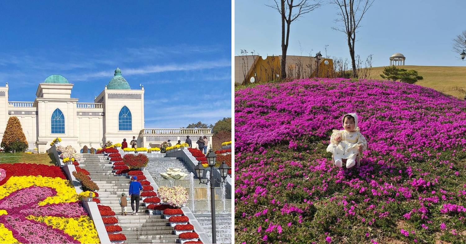 imsil cheese theme park - in spring