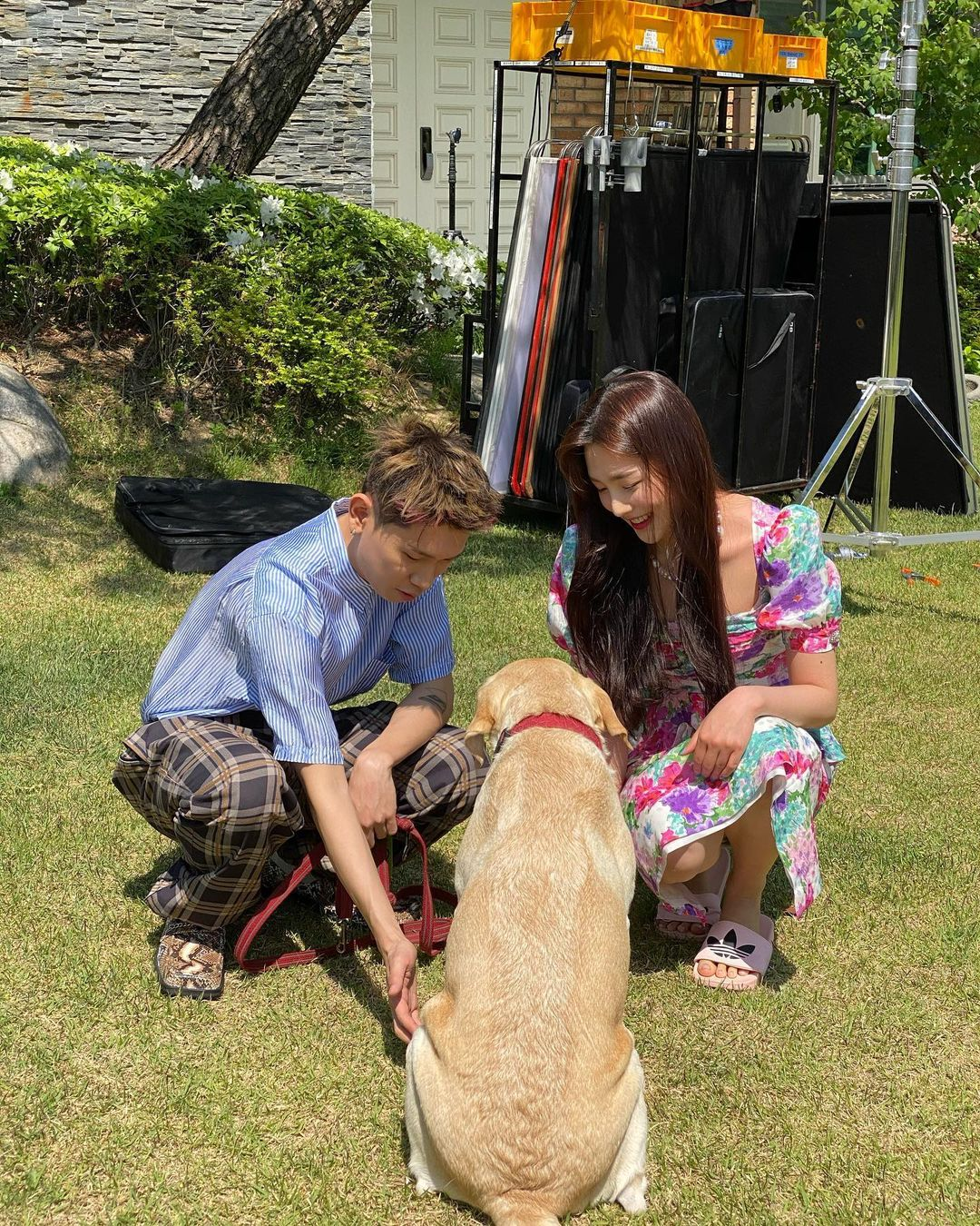 Joy and Crush confirmed to be dating - with a dog