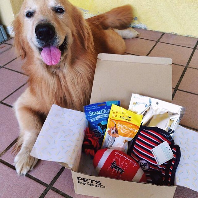 subscription box for pets