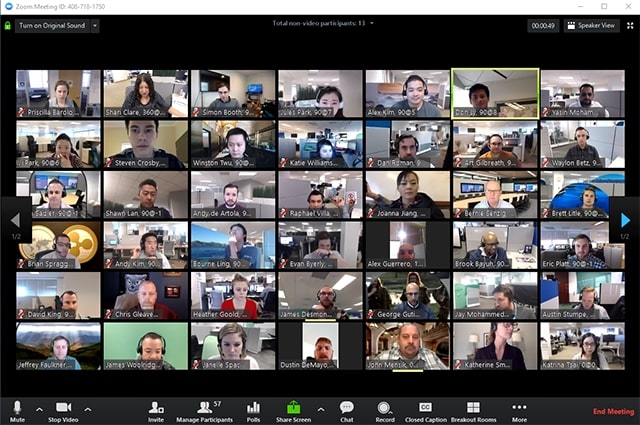 zoom big group call