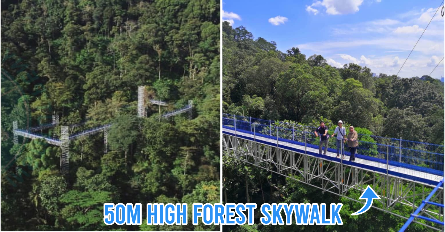 Forest Skywalk In Frim Has Panoramic Views Of Kl