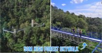 50M High Forest Skywalk With Panoramic Views Of KL Is Opening In FRIM On Merdeka Day