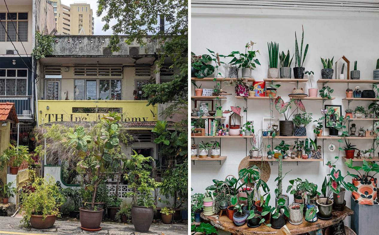 New cafes in KL & PJ - Planter Chin