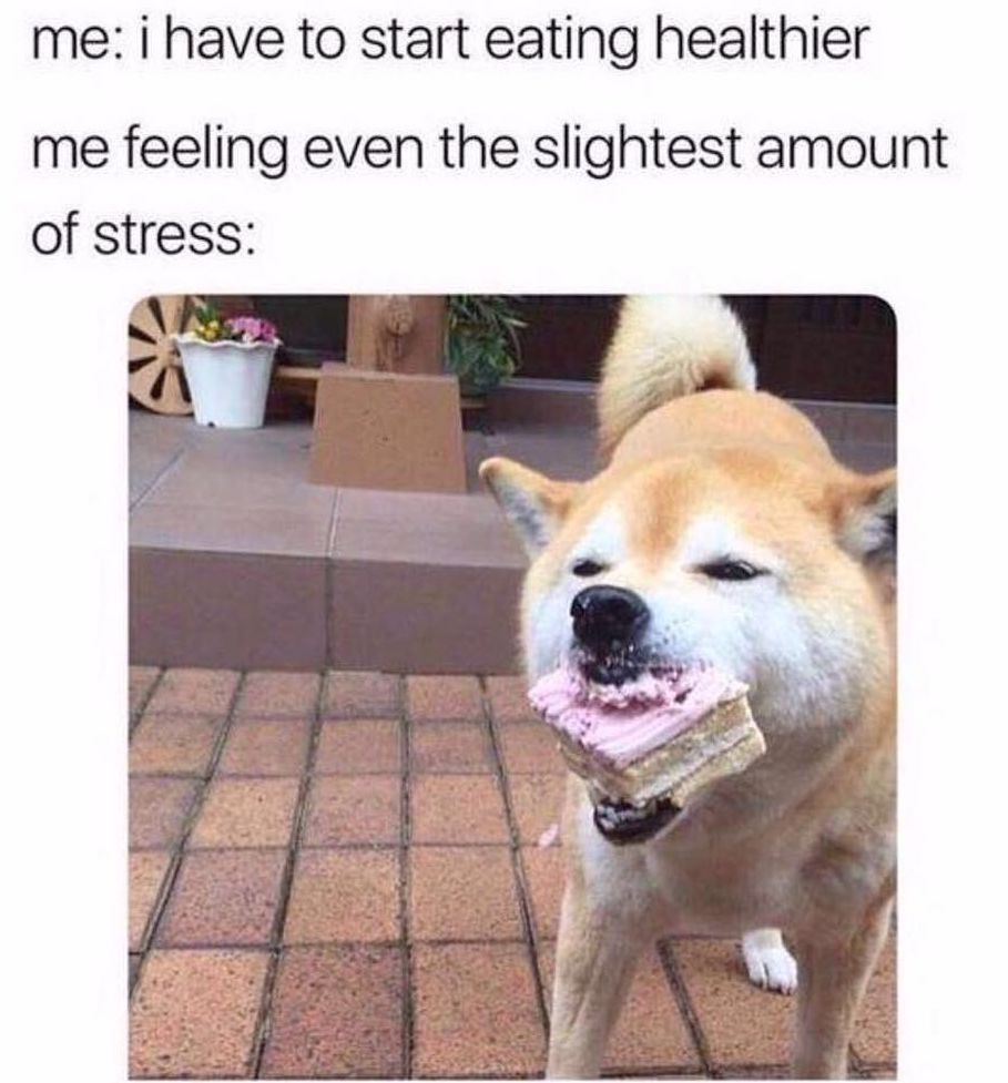meme about stress eating