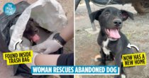 Woman Who Broke Into Tears While Rescuing Puppy Trapped Inside Trash Bag Earns M'sians Praise Online
