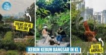 Kebun Kebun Bangsar: Free Family-Friendly Farm & Garden For A Much-needed Break From The City
