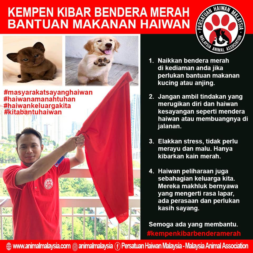 Red flag campaign poster