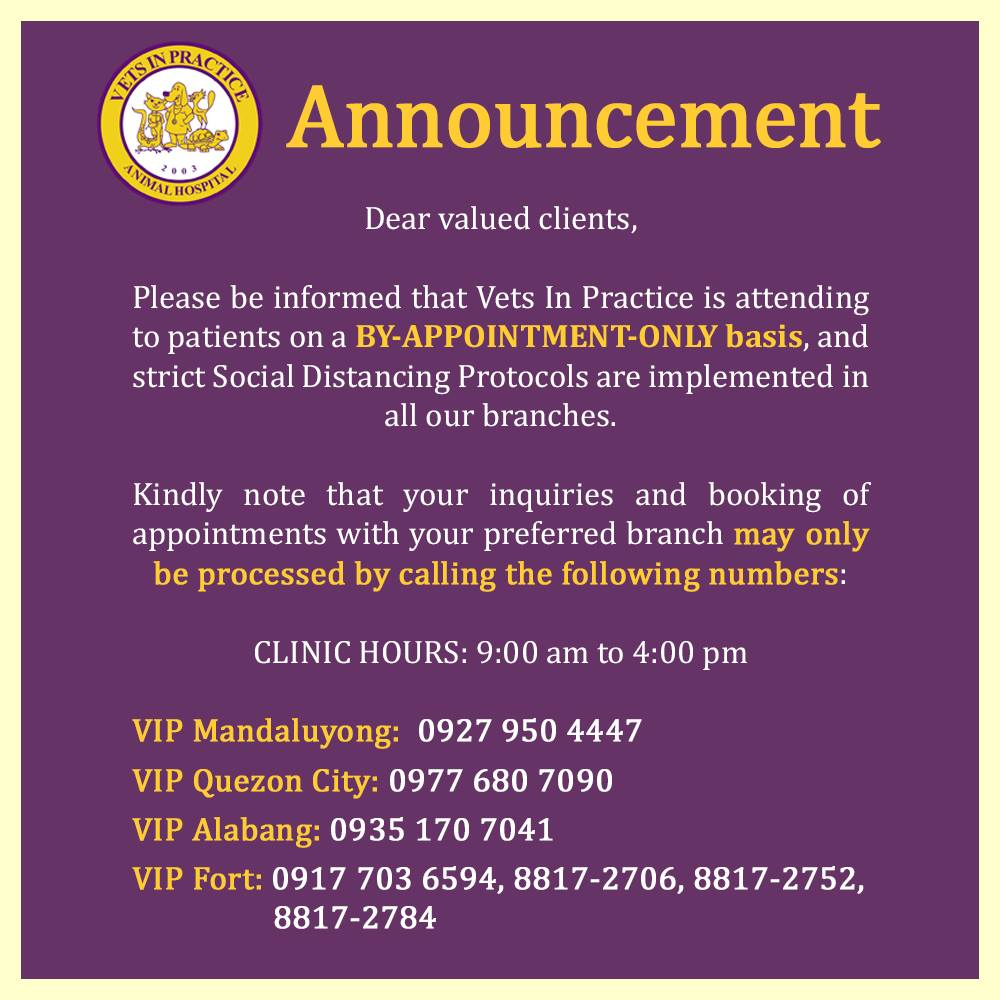 Vets in Practice clinic hours