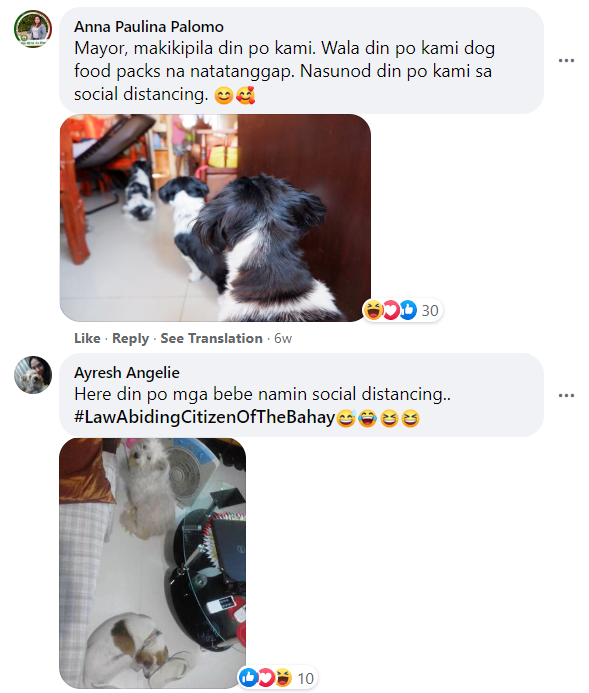 """Netizens praised the dogs, sharing pictures of their own pets following quarantine protocols and awaiting their """"food packs"""" in the post's comments section."""