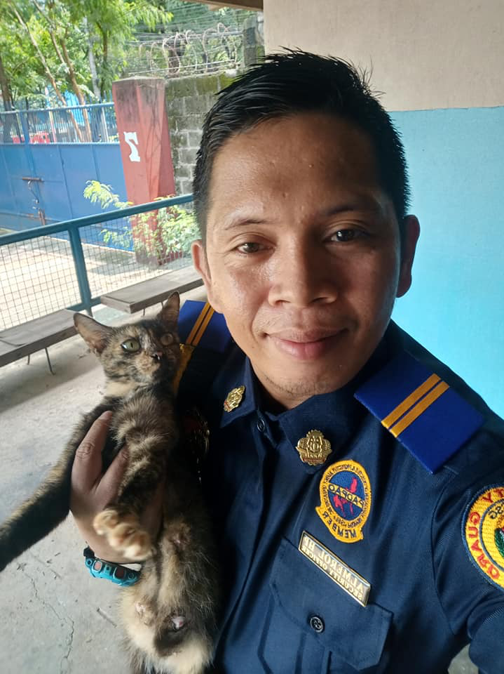 cat steals guard's lunch - security guard with cat
