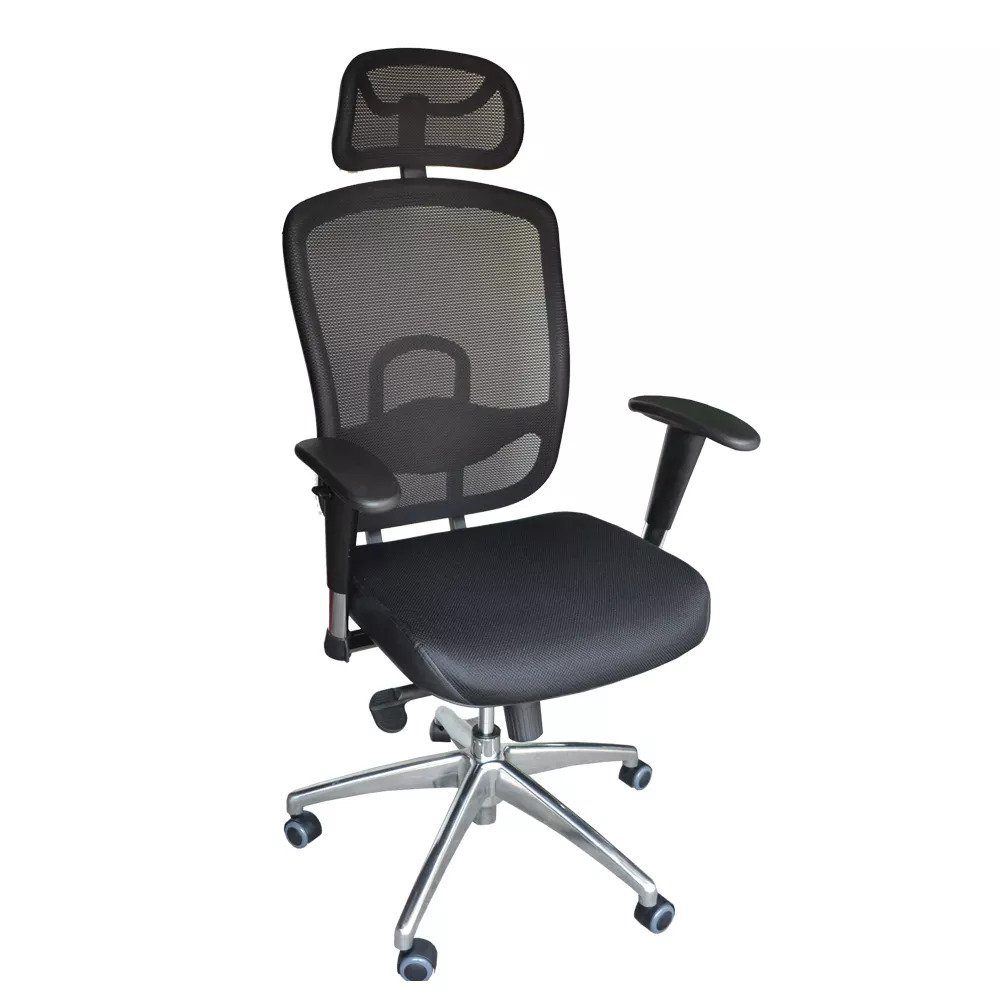 Office chairs - Cost U Less's Omega 2 Ergonomic Chair