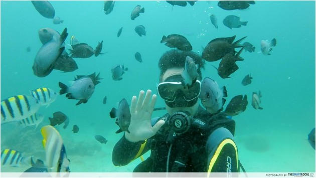 Philippine islands - Diving in Boracay