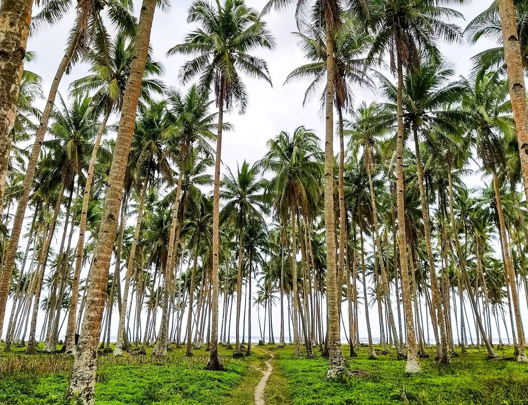 Siargao TIME World's Greatest Places 2021