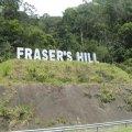 Fraser's Hill ( Bukit Fraser )