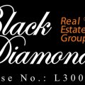 Black Diamond Real Estate Group
