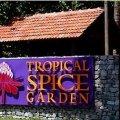 Tropical Spice Garden