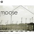 theMOOSE