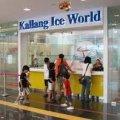 Kallng Ice World