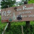 Thow Kwang Pottery
