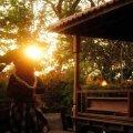 Blue Bali on Cluny
