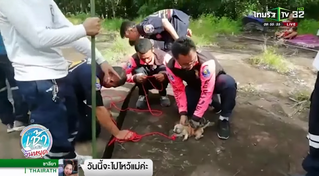 rescue officers saving the puppies