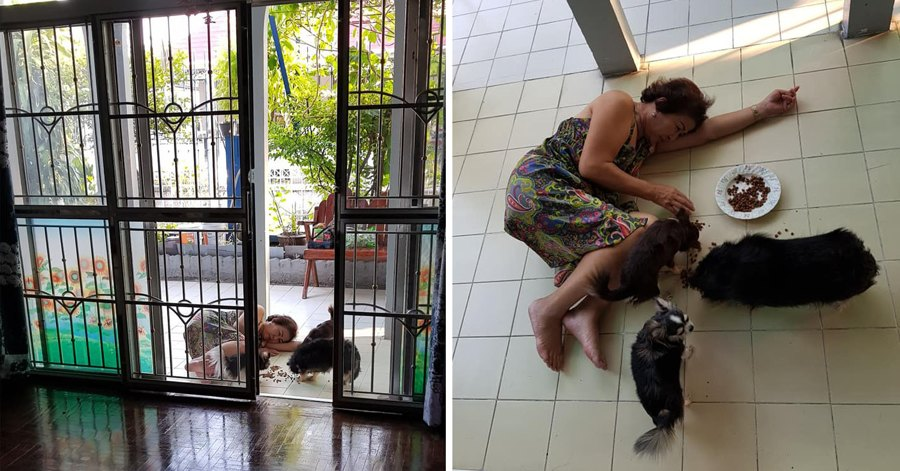Woman Gets A Shock At Mom Lying Motionless On The Floor, Turns Out She Was Just Feeding Her Dogs