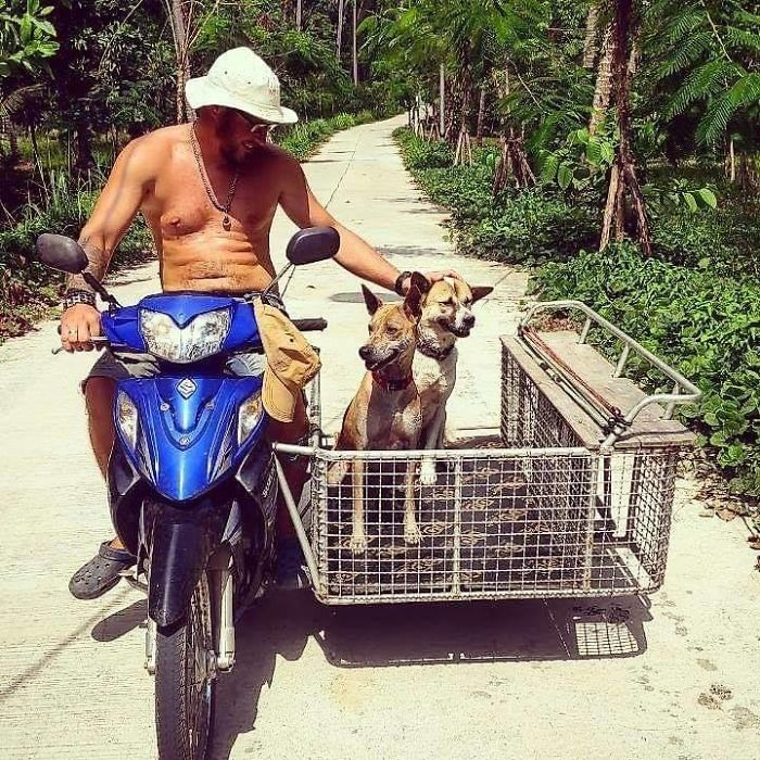thai dogs on motorcycle