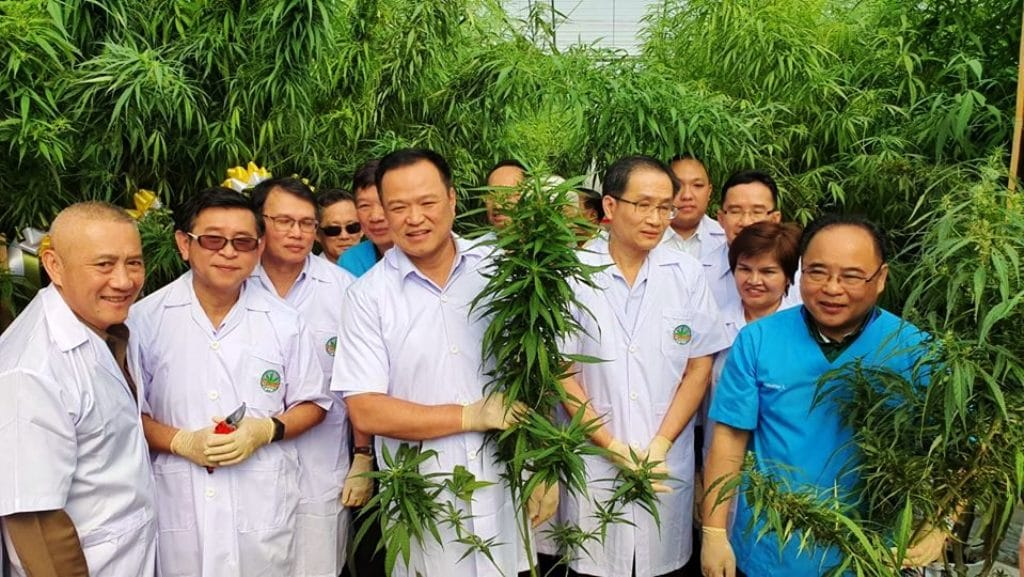 Thailand-to-Launch-Southeast-Asias-First-Medical-Marijuana-Tour