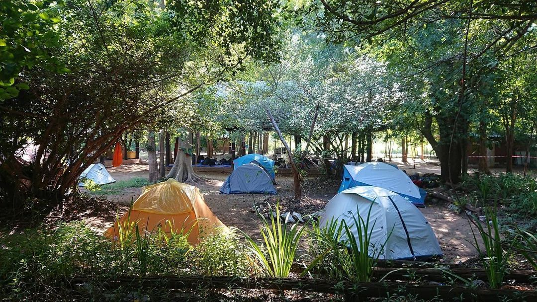 nppy climbing campground