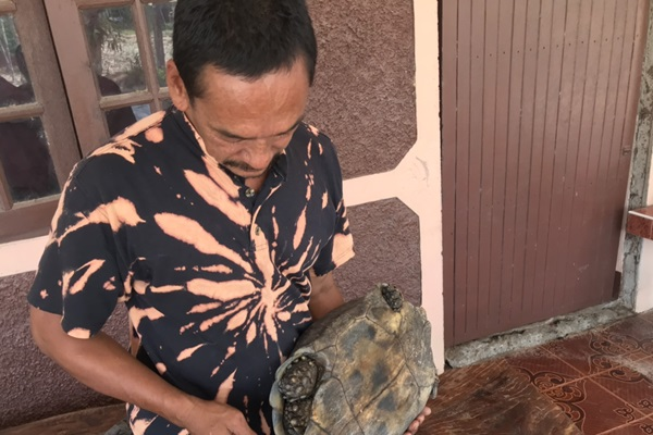 Thai Couple Saved A Rare Six Legged Turtle From Becoming A Meal