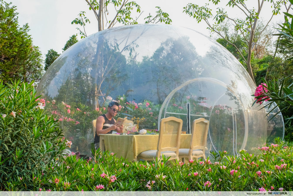 bubble in the forest