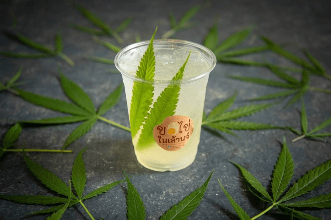12 Hemp Restaurants In Thailand With Dishes And Drinks That'll Def Satisfy The Munchies