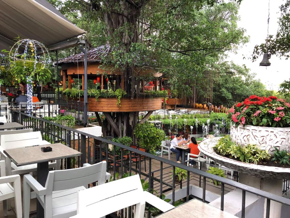 du mien garden coffee balcony
