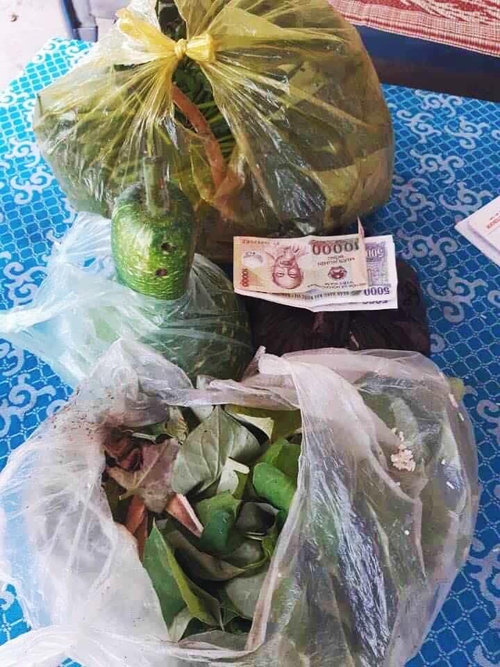 Vietnam corona relief efforts donation