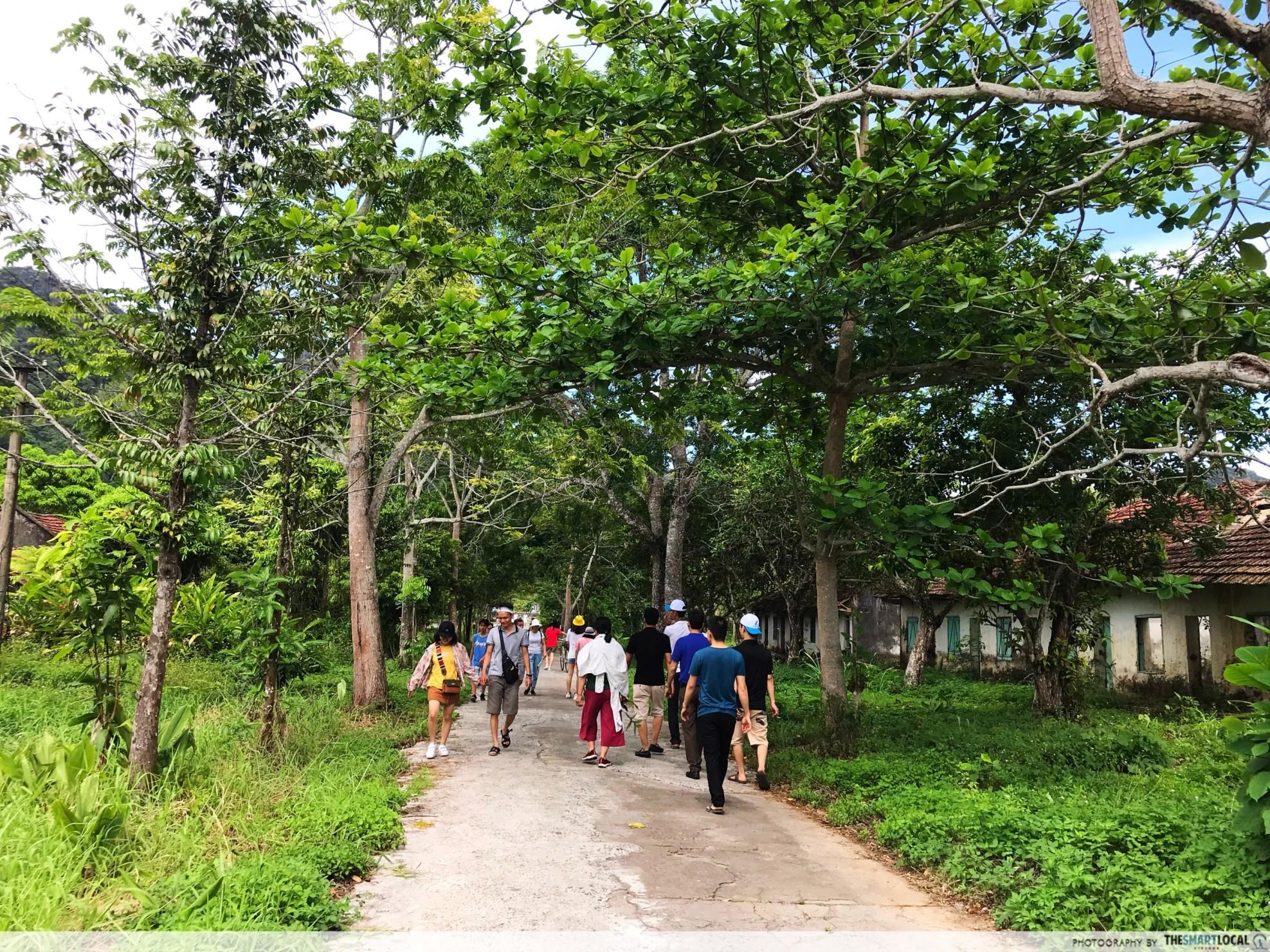 vietnam natural landscapes_Cat Ba National Park