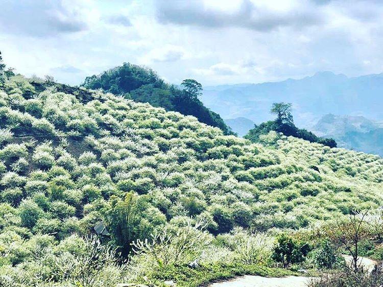 Vietnam natural landscape_Na Ka valley